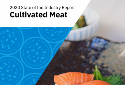 Cultivated meat state of the industry report