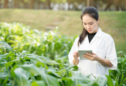 Scientist researching plant-based meat
